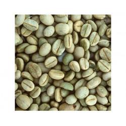 CAFE VERDE BRASIL SANTOS