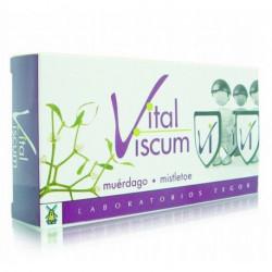 Vital viscum -Tegor - 40 cápsulas