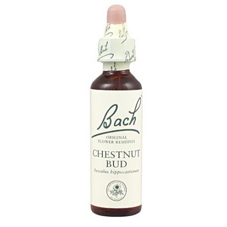 Chestnut Bud Flores de bach originales 20 ml